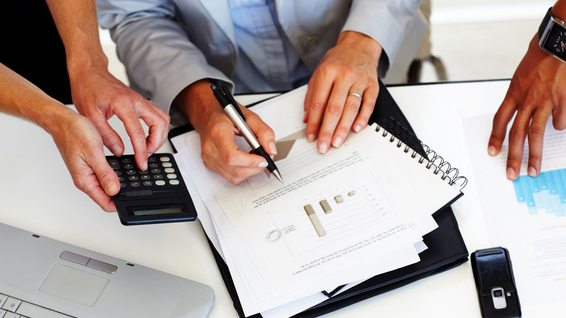 audit_organisation